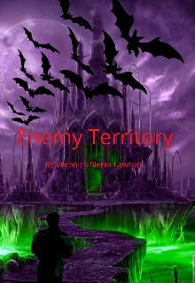 "Book. ""Enemy Territory "" read online"