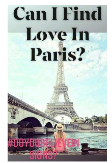 """Book. """"Can I Find Love In Paris?"""" read online"""