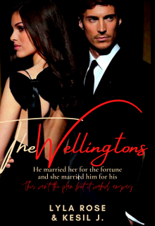 "Book. ""Mr. & Mrs. Wellington"" read online"