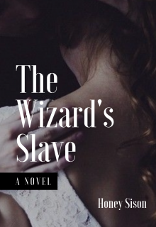 """Book cover """"The Wizard's Slave"""""""