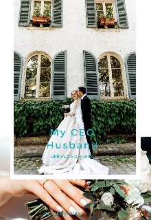 """Book. """"My Ceo Husband"""" read online"""
